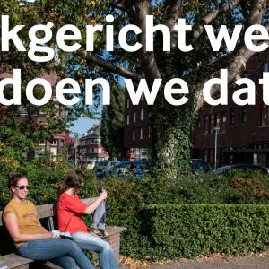publicatie_wijkgerichtwerken